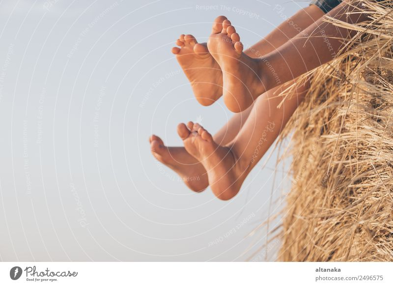 Glückliche Kinder beim Spielen im Park Lifestyle Freude schön Freizeit & Hobby Ferien & Urlaub & Reisen Freiheit Sommer Schule Mensch Junge Schwester