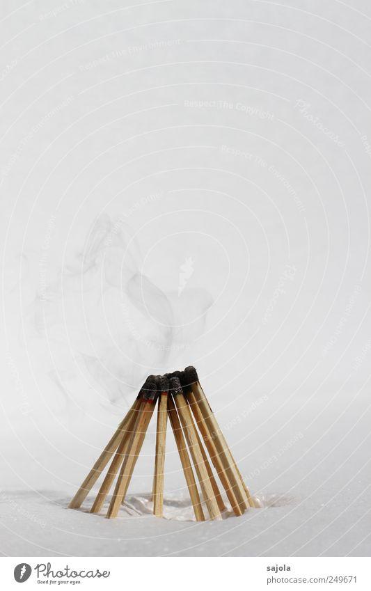 rauchende köpfe Holz stehen Beratung Gesellschaft (Soziologie) Team Teamwork Zusammenhalt Rauch Streichholz streichholzkopf brennbar zündend Idee anlehnen
