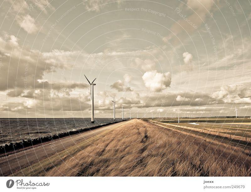 Frischer Wind Fortschritt Zukunft Energiewirtschaft Erneuerbare Energie Windkraftanlage Umwelt Landschaft Himmel Wolken Horizont Sommer Schönes Wetter Küste