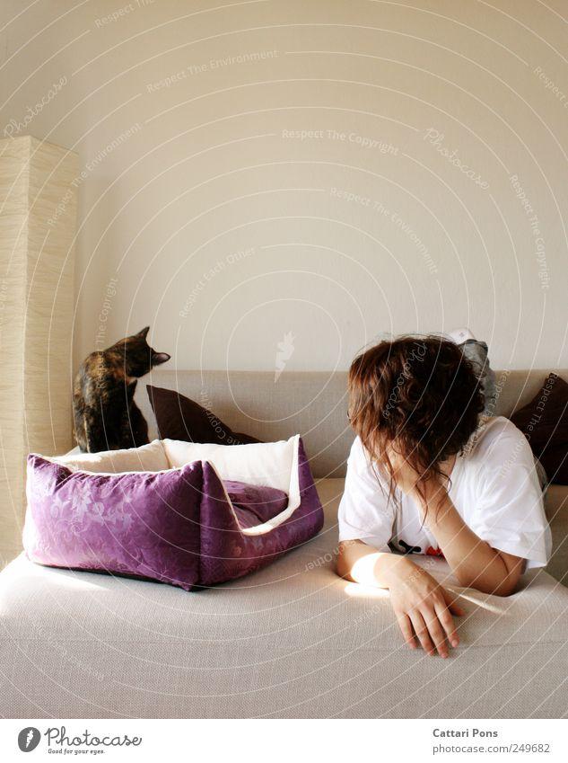 wegsehen Frau Mensch Jugendliche schön Tier feminin Erwachsene Katze Lampe Freizeit & Hobby Zusammensein liegen einzigartig Bett niedlich