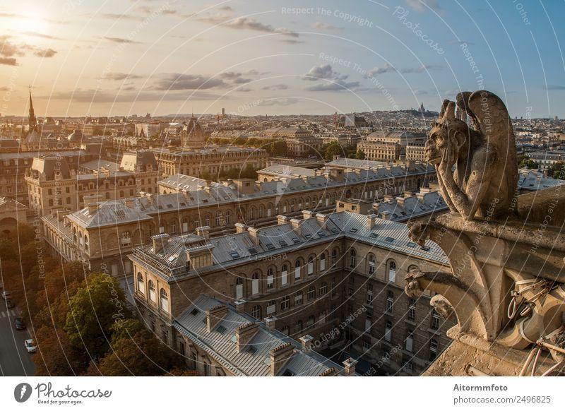 Gargoyle auf Notre Dame in Paris Stil Ferien & Urlaub & Reisen Tourismus Sightseeing Sommer Haus Landschaft Himmel Stadt Architektur Straße Stein alt historisch