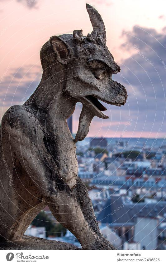 Gargoyle auf Notre Dame In Paris bei Sonnenuntergang Stil Tourismus Sightseeing Dekoration & Verzierung Kunst Kultur Himmel Skyline Architektur Balkon Stein alt