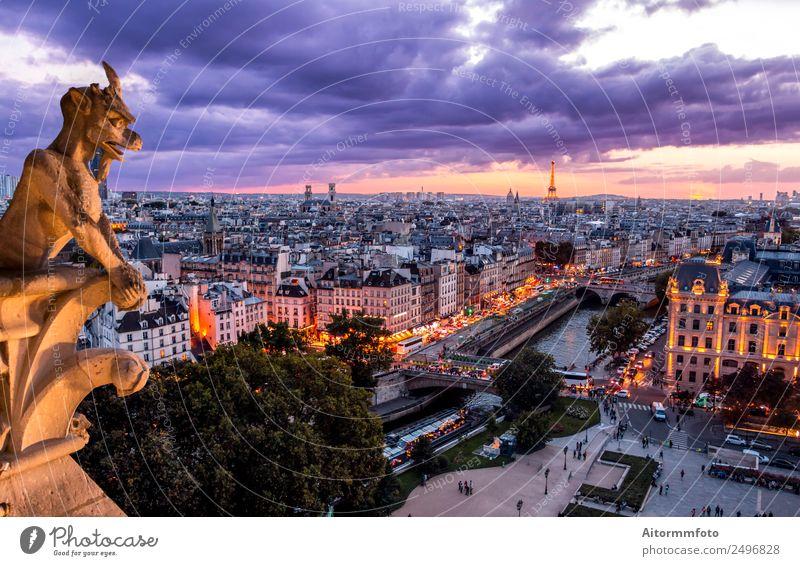 Gargoyle auf Notre Dame In Paris bei Sonnenuntergang Ferien & Urlaub & Reisen Tourismus Sightseeing Kunst Landschaft Himmel Wolken Skyline Gebäude Architektur
