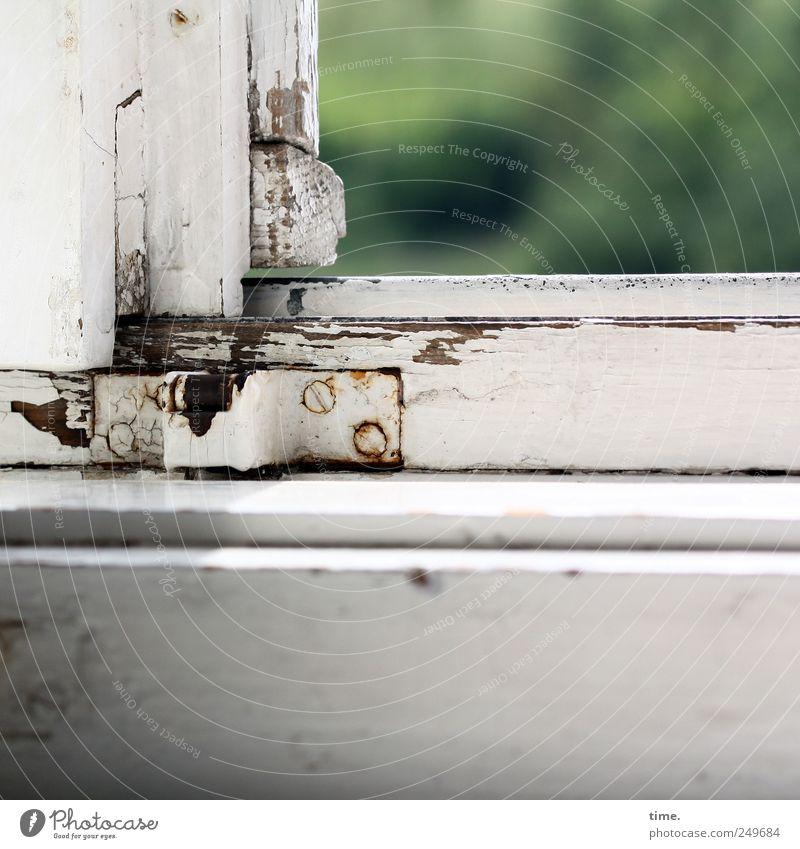 Die Axt im Haus erspart den Zimmermann Fenster Lack Holz alt grün weiß Fensterrahmen Fensterblick verbraucht Scharnier Schraube Blech Fensterbrett Rost