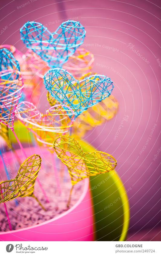 ...wer soll nun dein Herzblatt sein? blau Liebe Freundschaft Herz Dekoration & Verzierung Geschenk Romantik Verliebtheit Draht Lust Begierde Sympathie mehrfarbig