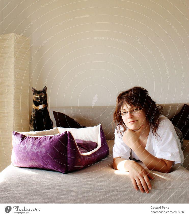 hinsehen Frau Mensch Jugendliche schön Tier Erholung feminin Erwachsene Katze hell Zufriedenheit Zusammensein liegen weich violett beobachten