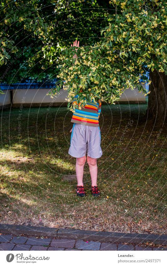 Halt Stopp Mensch maskulin Kind Kleinkind Junge 1 3-8 Jahre Kindheit 8-13 Jahre festhalten protestieren Natur Glück Spielen Freizeit & Hobby regenbogenfarben
