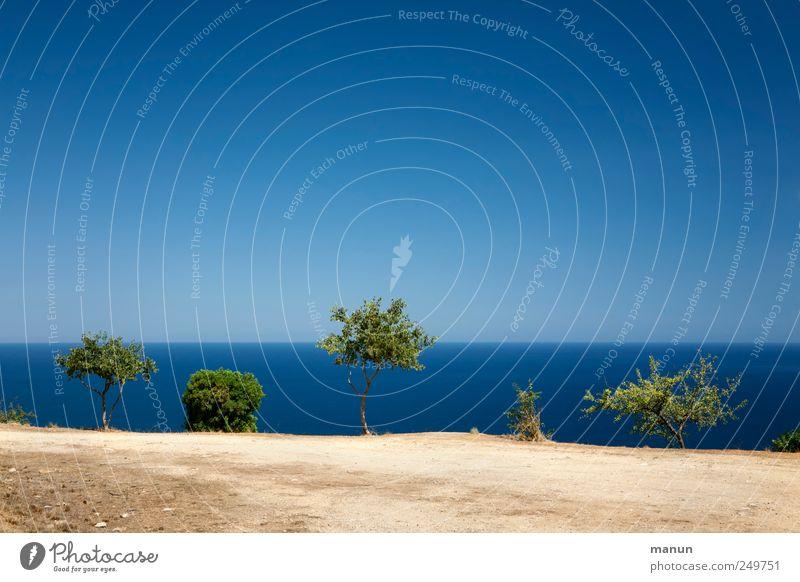 Fahrt ins Blaue Himmel Natur Wasser blau Baum Ferien & Urlaub & Reisen Meer Ferne Landschaft Sand Küste Horizont Erde natürlich authentisch Perspektive