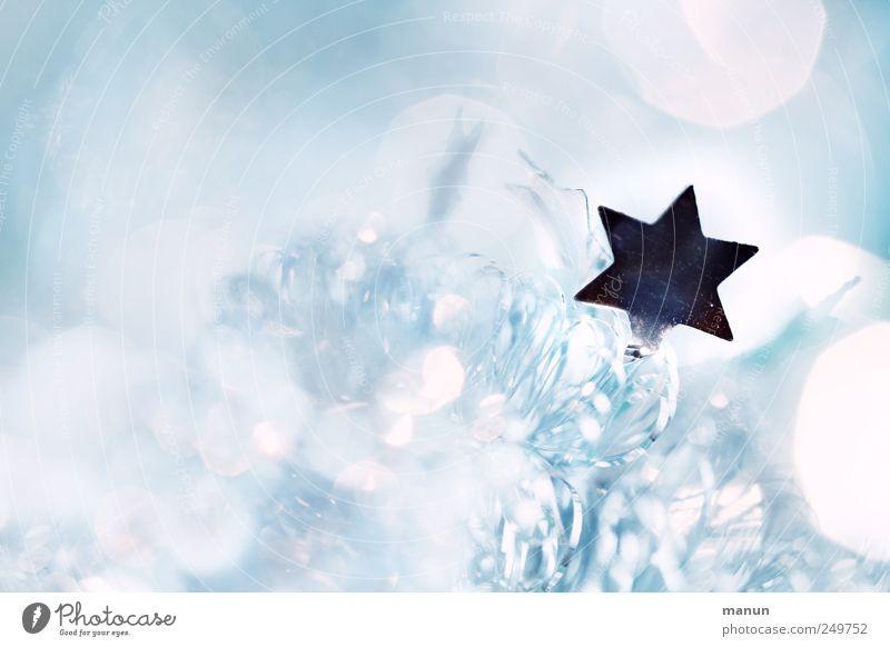 Sternenglimmer Weihnachten & Advent Stil hell Feste & Feiern Stern (Symbol) Zeichen silber festlich Weihnachtsstern