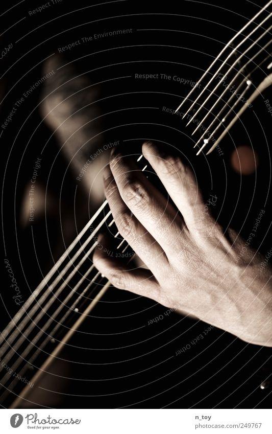 Fünf Saiten zum Glück maskulin Mann Erwachsene Hand Finger 1 Mensch Künstler Musik Konzert Band Musiker Kontrabass Bassist Bassspieler Rockband Coolness