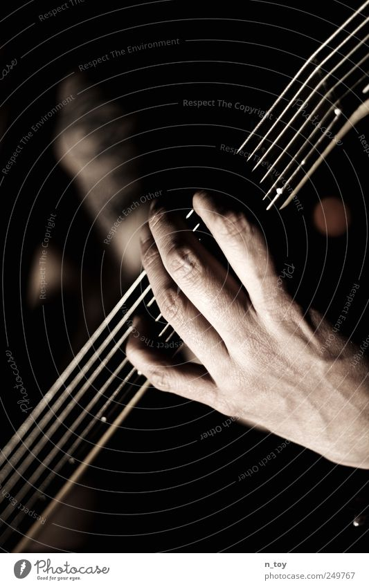 Fünf Saiten zum Glück Mensch Mann Hand Erwachsene Musik Kunst maskulin Finger Coolness Rockmusik Tattoo Konzert Leidenschaft Band Künstler Musiker