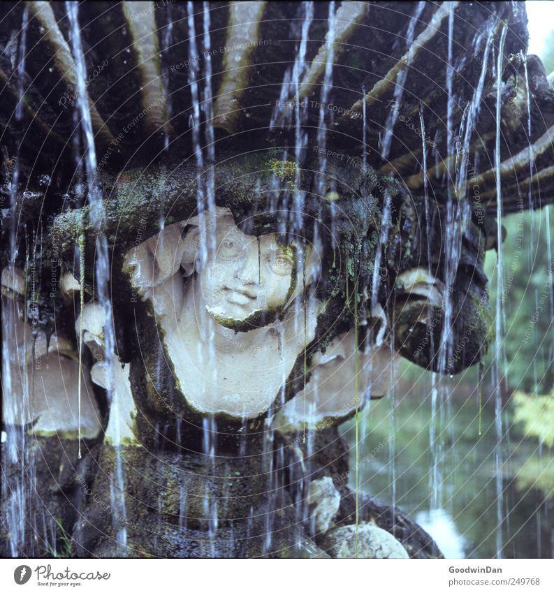 Hyde Park. Umwelt Natur Moos Säule Brunnen alt dreckig elegant groß kalt nah nass schön trist Stimmung Farbfoto Außenaufnahme Menschenleer Tag Licht Kontrast
