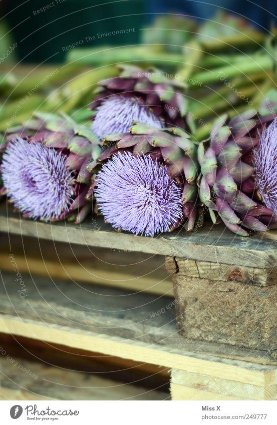 Artischocke Pflanze Blume Blatt Blüte violett Gemüse exotisch stachelig Paletten Blumenhändler Marktstand Blumenladen Wochenmarkt Artischocke Distelblüte