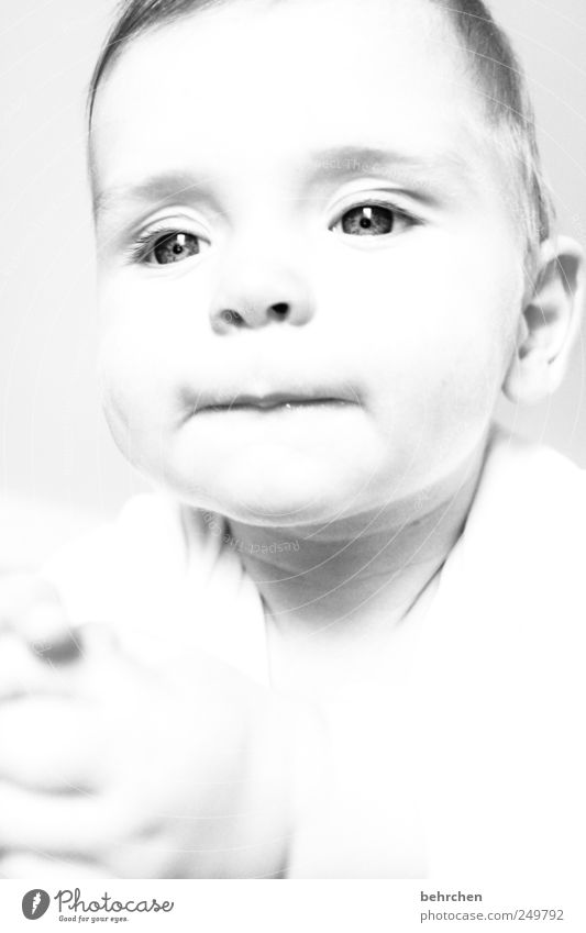 lässchen maskulin Kind Baby Junge Kindheit Haut Kopf Haare & Frisuren Gesicht Auge Ohr Nase Mund Lippen Hand 1 Mensch 0-12 Monate Freude Glück Fröhlichkeit