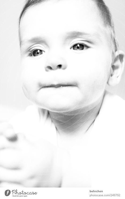 lässchen Mensch Kind schön Hand Freude Gesicht Auge Junge Glück Haare & Frisuren Kopf maskulin Zufriedenheit nachdenklich Kindheit Fröhlichkeit