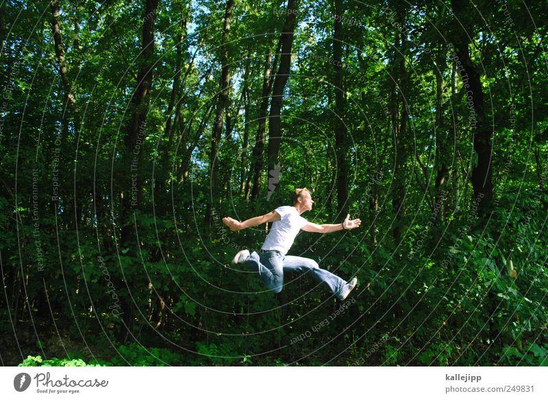 grüne lunge Mensch Natur Baum Pflanze Tier Wald Erwachsene Erholung Umwelt Leben Luft Gesundheit Zufriedenheit Freizeit & Hobby laufen maskulin