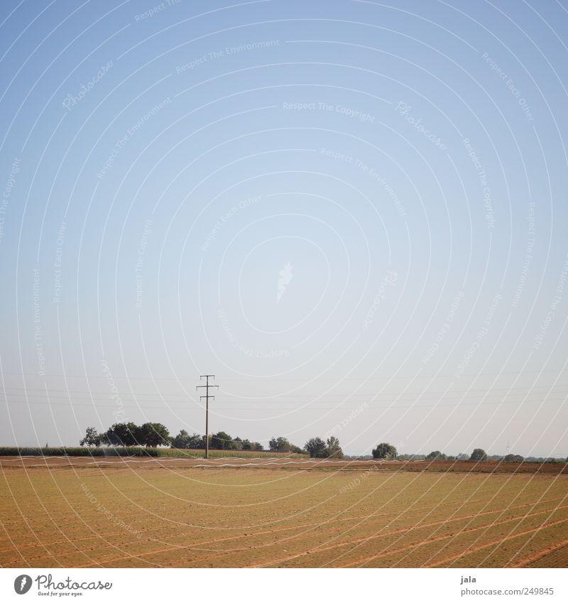 spätsommer Himmel Natur grün blau Baum Pflanze Umwelt Landschaft Gras braun Feld natürlich Unendlichkeit