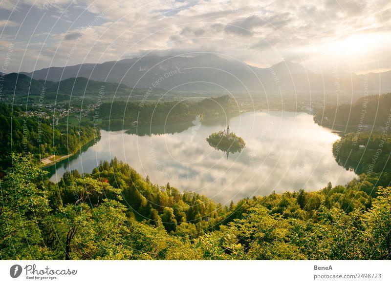 Bleder See mit Marienkirche in Slowenien im Morgenlicht Ferien & Urlaub & Reisen Tourismus Ausflug Ferne Sightseeing Sommer Sommerurlaub Sonne Natur Landschaft