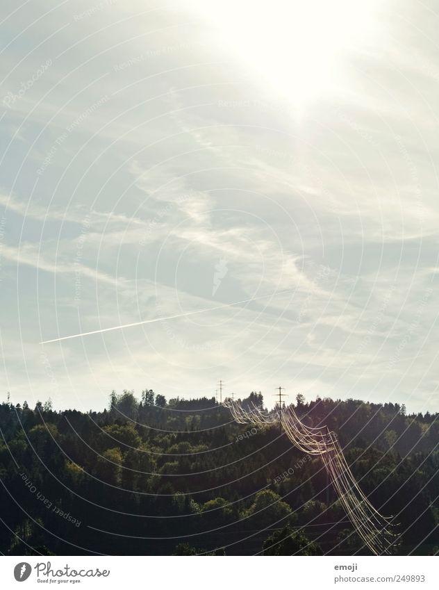 Strom Natur Himmel Sommer Wald natürlich Elektrizität Strommast Stromdraht Hochspannungsleitung industriell Farbfoto Außenaufnahme Menschenleer
