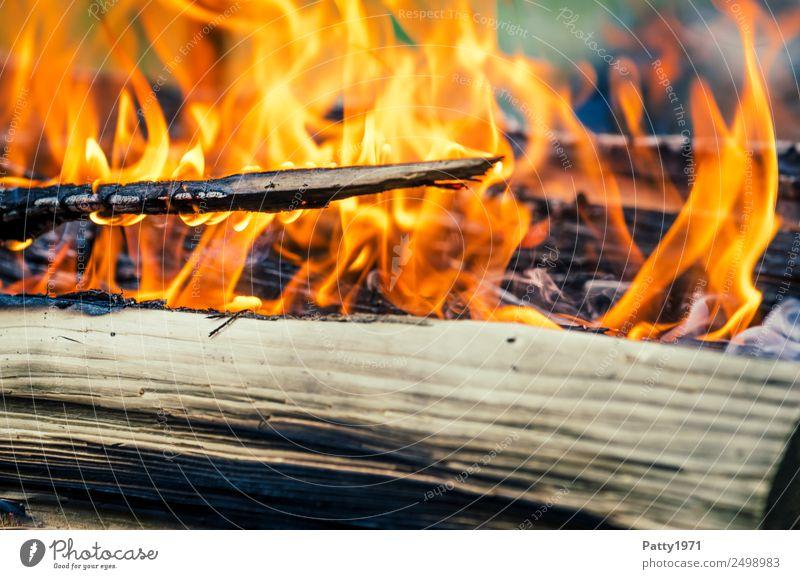 Brennendes Holz Feuerstelle Abenteuer Umwelt Natur Urelemente heiß gelb orange rot schwarz bedrohlich Umweltverschmutzung Zerstörung brennen Farbfoto