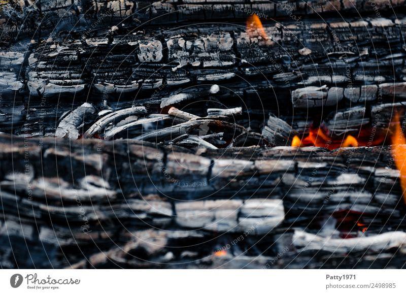 Brennendes Holz Abenteuer Feuerstelle Umwelt Natur Urelemente heiß grau orange rot schwarz bedrohlich Umweltverschmutzung Zerstörung brennen Farbfoto