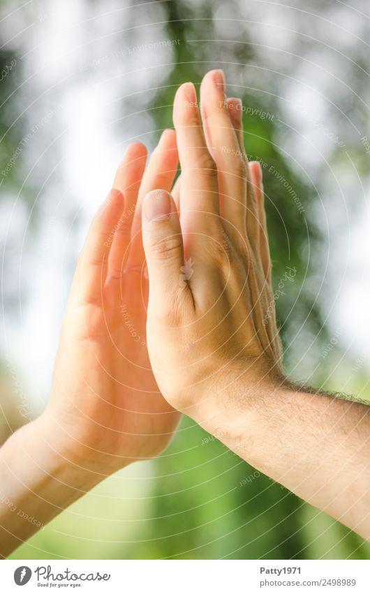 Männerhände im Sonnenlicht brühren sich an den Handflächen. High Five Nahaufnahme. Mensch maskulin Homosexualität Mann Erwachsene 2 18-30 Jahre Jugendliche