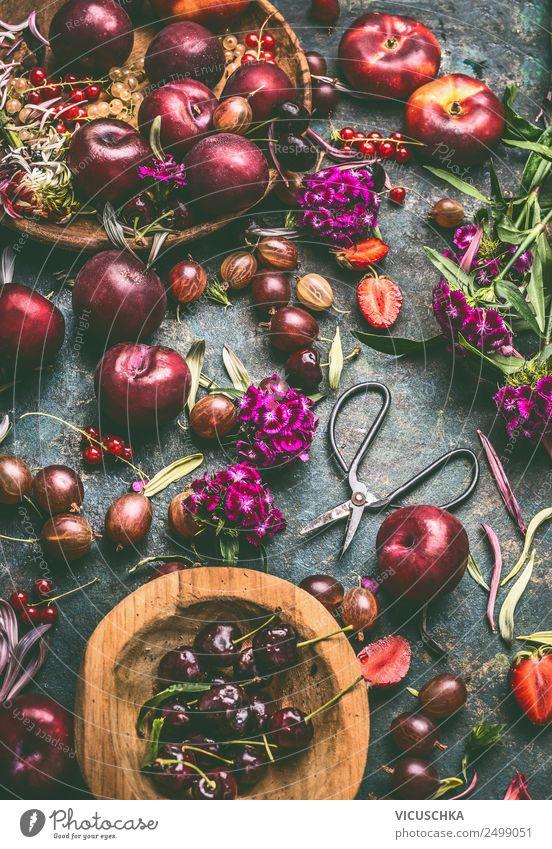 Sommerfrüchte und -Beeren Stillleben Lebensmittel Frucht Ernährung Bioprodukte Vegetarische Ernährung Diät Geschirr Design Gesundheit Gesunde Ernährung