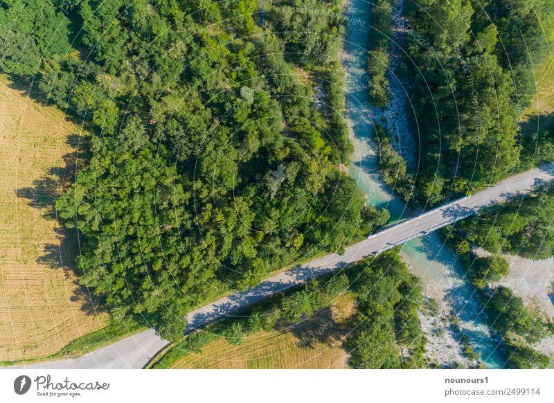 Brücke über die Roanne Natur Landschaft Wasser Sommer Baum Blume Flussufer Menschenleer Bauwerk Straßenverkehr grau grün Farbfoto mehrfarbig Außenaufnahme