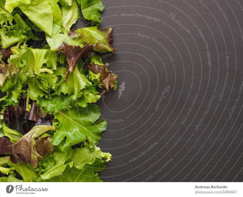 Frischer Salat, Salatblätter, gemischt, Tafel mit Textraum Natur Speise Lifestyle Gesundheit Hintergrundbild Lebensmittel Fitness planen lecker Bioprodukte
