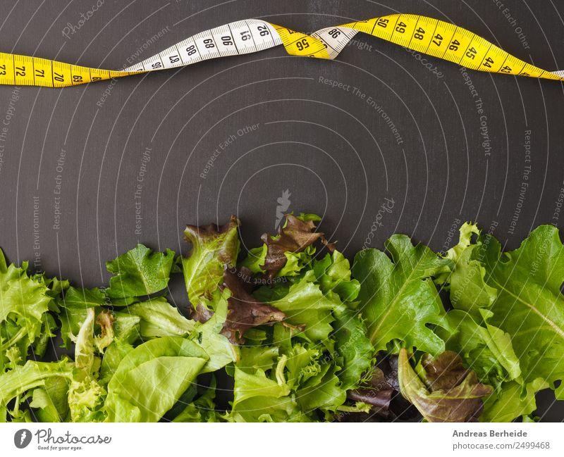 Frischer Blattsalat mit einem Maßband auf einer Tafel Salat Salatbeilage Bioprodukte Vegetarische Ernährung Diät Lifestyle Gesunde Ernährung Leben Restaurant