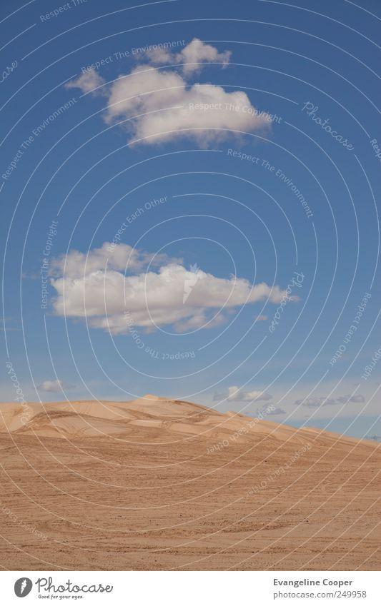 Sonora-Wüste I Himmel blau Ferien & Urlaub & Reisen Wolken gelb Landschaft Sand Wärme Ausflug Abenteuer trocken Amerika Expedition Kalifornien Motorsport