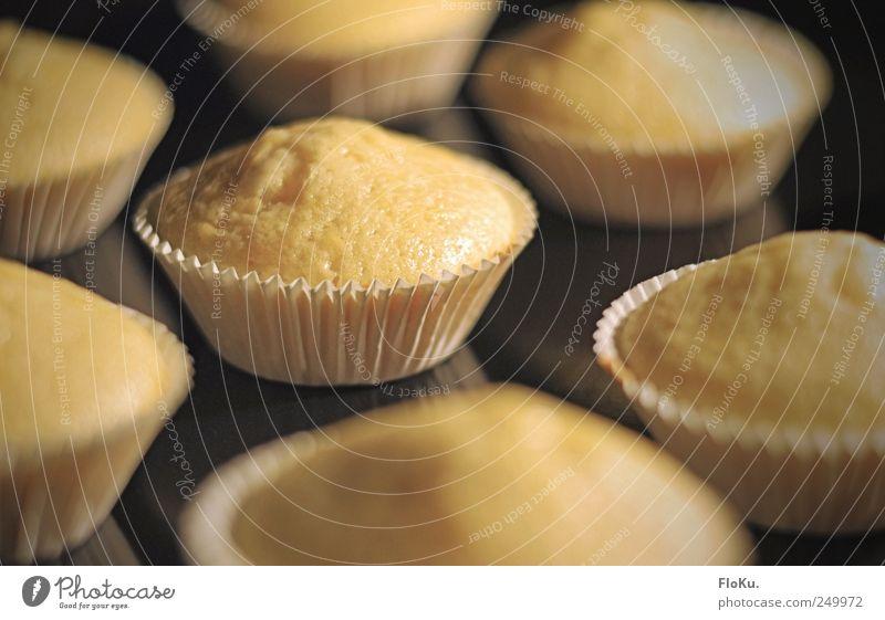 Baking of Lebensmittel Teigwaren Backwaren Kuchen Dessert Süßwaren Ernährung Küche Gastronomie gelb schwarz Bäckerei Muffin Törtchen Backblech aufgehen süß