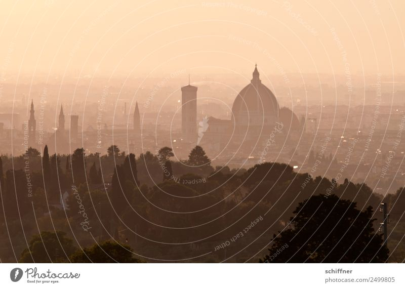 Goldpuder Sommer Stadt Landschaft Baum Haus schwarz Wärme Gebäude orange braun Nebel gold Kirche ästhetisch Schönes Wetter Italien