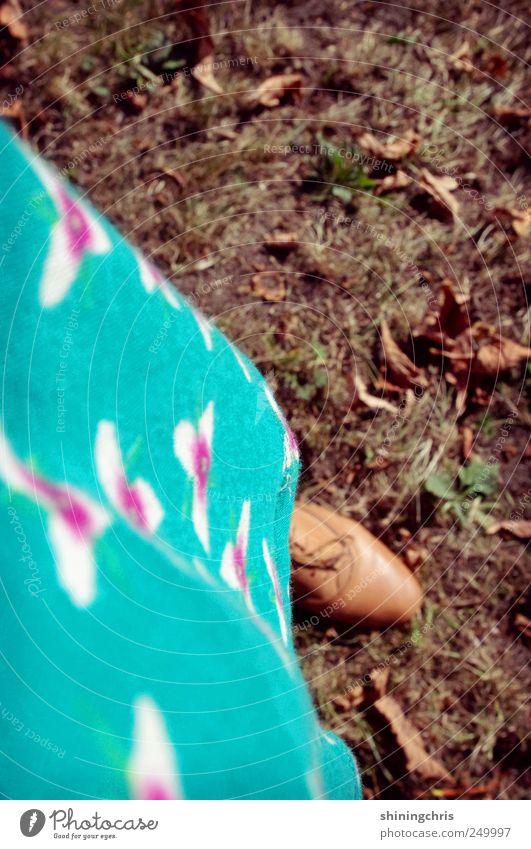 rumpelstilzchen Mensch 1 Natur Herbst Kleid Schuhe schnürschuhe gehen stehen grün Mut Abenteuer Idylle ruhig Vergänglichkeit blümchenkleid Farbfoto