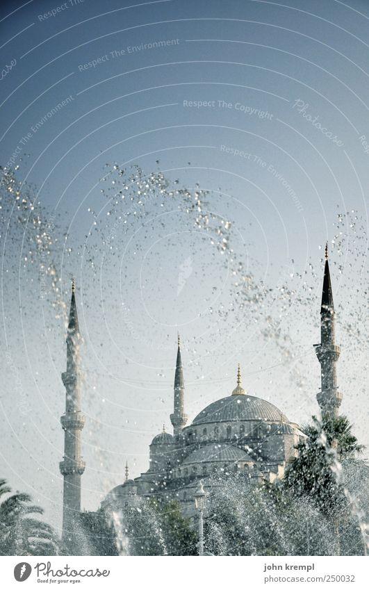 ein blaues wunder Istanbul Türkei Hauptstadt Stadtzentrum Bauwerk Gebäude Architektur Moschee Blaue Moschee Minarett Kuppeldach Sehenswürdigkeit Wahrzeichen