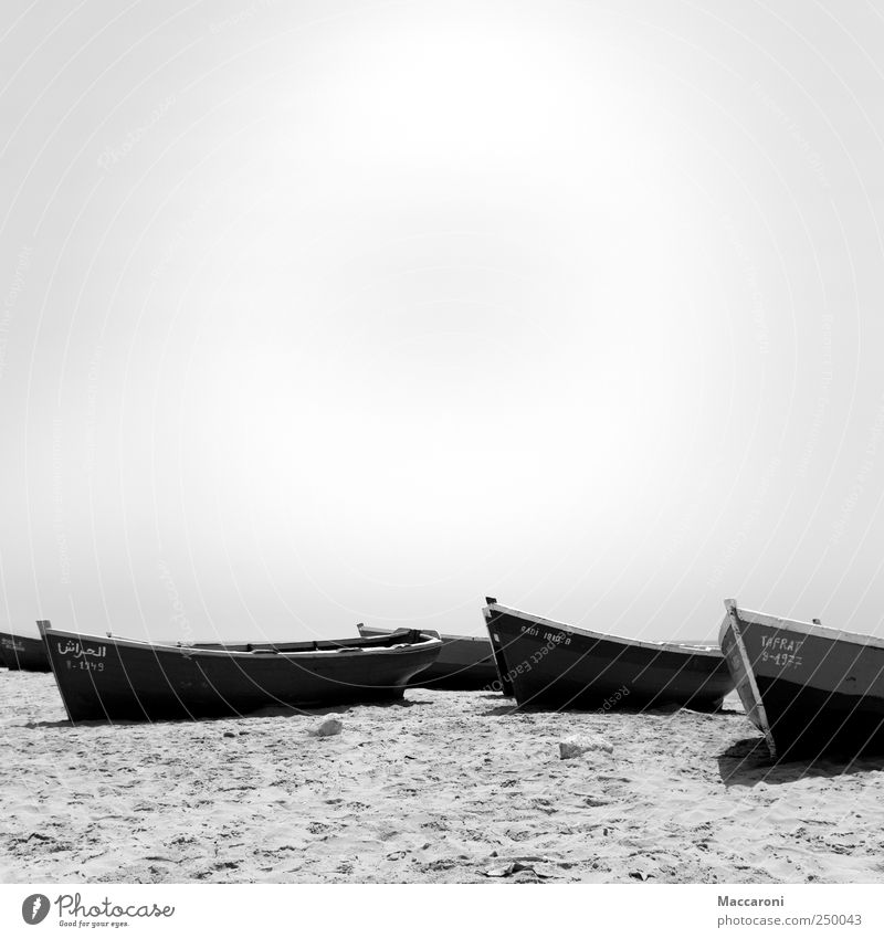 Anekdote zur Senkung der Arbeitsmoral! Angeln Ferien & Urlaub & Reisen Abenteuer Ferne Freiheit Sommerurlaub Strand Meer Insel Wellen Schönes Wetter Küste