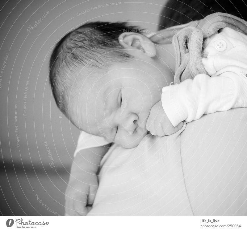 abgefüllt harmonisch Wohlgefühl Erholung ruhig Baby Eltern Erwachsene Gesicht 0-12 Monate brünett hängen liegen schlafen träumen niedlich Lebensfreude