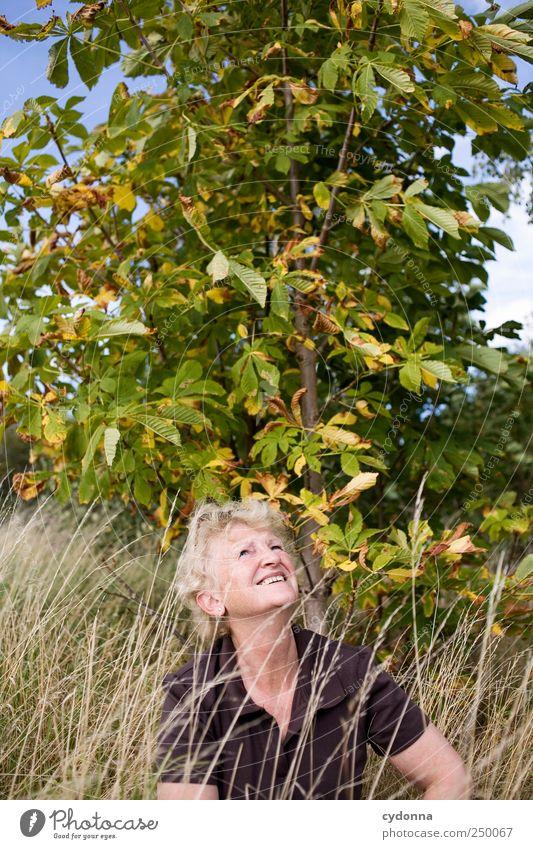 Lebensfreude Frau Mensch Natur Freude ruhig Erholung Herbst Wiese Umwelt Freiheit Erwachsene Senior träumen Gesundheit Zufriedenheit
