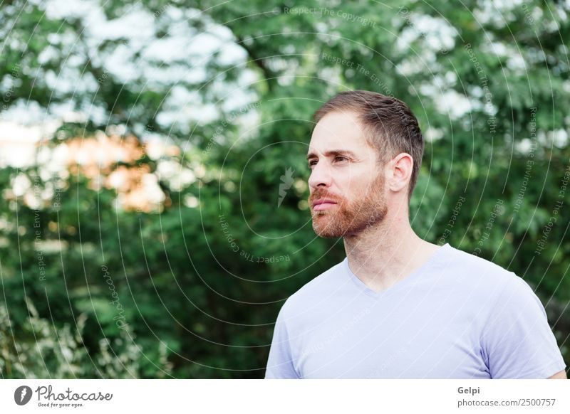 Porträt eines lässigen bärtigen Mannes Lifestyle Stil Glück Haare & Frisuren Gesicht Erholung Mensch maskulin Junge Erwachsene Natur Park Mode Hemd Jeanshose