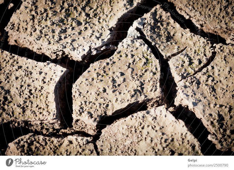 Natur Sommer Umwelt natürlich Tod braun Sand Wetter Erde dreckig Klima Boden heiß Riss Oberfläche Desaster
