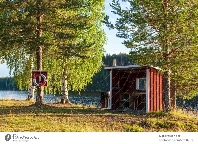 Küche Outdoor Ferien & Urlaub & Reisen Abenteuer Freiheit Camping Sommerurlaub Natur Landschaft Schönes Wetter Baum Gras Wald Seeufer Hütte Schwimmen & Baden
