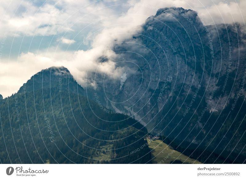 Nebel am Morgen Natur Ferien & Urlaub & Reisen Sommer Pflanze Landschaft Wald Ferne Berge u. Gebirge Umwelt Tourismus Freiheit Ausflug wandern Abenteuer