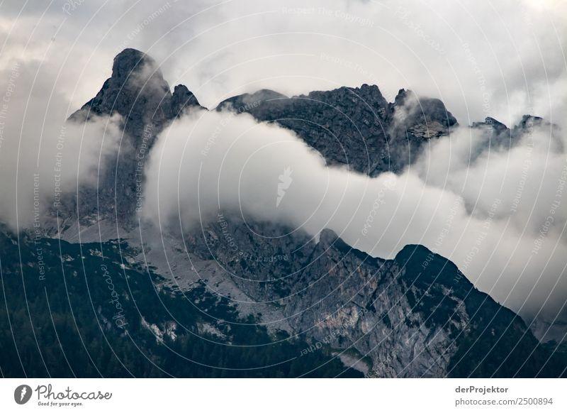 Nebelgebirge in Abtenau Natur Ferien & Urlaub & Reisen Sommer Pflanze Landschaft Baum Ferne Berge u. Gebirge Umwelt Tourismus Freiheit außergewöhnlich Felsen