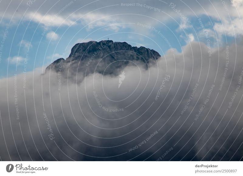 Gipfel im Nebel Natur Ferien & Urlaub & Reisen Sommer Pflanze Landschaft Ferne Berge u. Gebirge Umwelt Tourismus Freiheit außergewöhnlich grau Ausflug wandern