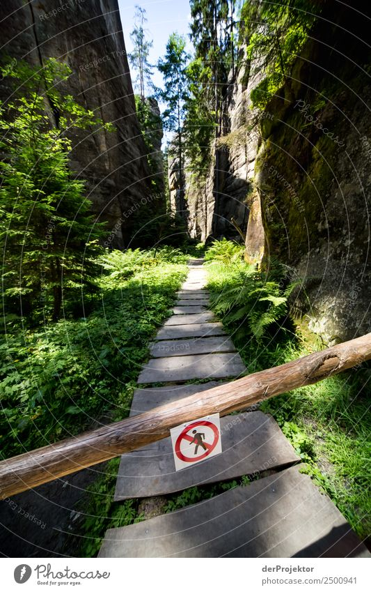 Verbotene Wege Ferien & Urlaub & Reisen Tourismus Ausflug Abenteuer Ferne Expedition Camping Berge u. Gebirge wandern Umwelt Natur Landschaft Pflanze Tier