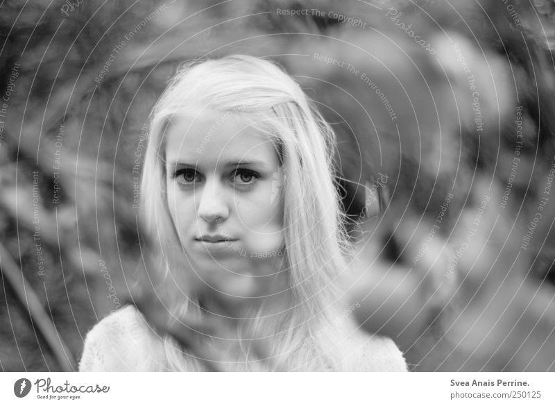 schneeweißchen Mensch Jugendliche Gesicht feminin kalt Umwelt Haare & Frisuren blond einzigartig Ast langhaarig Zweig Junge Frau stagnierend Entschlossenheit