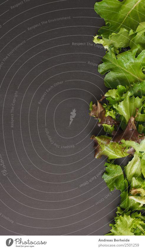 Frischer Blattsalat auf einer Tafel mit Textraum links Gemüse Salat Salatbeilage Bioprodukte Vegetarische Ernährung Diät Lifestyle Gesundheit Restaurant Fitness
