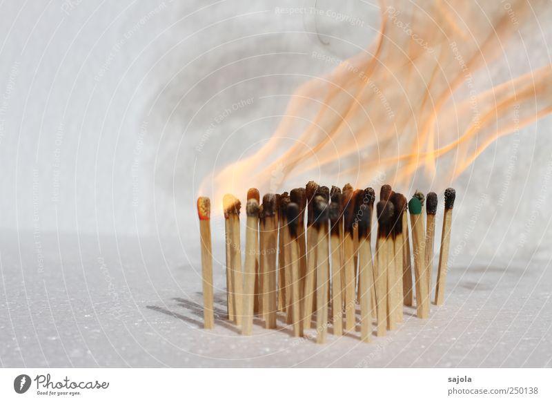 burn out Holz Feuer viele heiß Rauch brennen Flamme Streichholz entzünden Freisteller Licht Brandgefahr Feuerschein Vor hellem Hintergrund