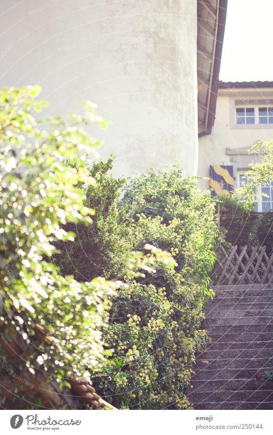Gutshaus grün Haus Wand Mauer Fassade Treppe natürlich Sträucher Gutshaus Einfamilienhaus Traumhaus