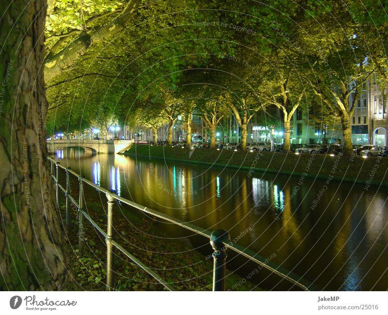 Lichspiel in Düsseldorf Natur Wasser Baum Küste modern Düsseldorf
